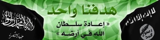 Actualités au Moyen Orient - Page 7 0617_deux_drapeaux